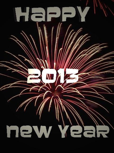 Fireworks 2013 --Celebrate.